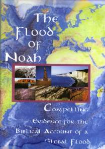 evidence for the biblical flood This study is broken into two parts, the evidence (or defense) for the flood followed by a biblical study of the flood account in our skeptical culture, i believe it is necessary to understand what you believe and why you believe it.